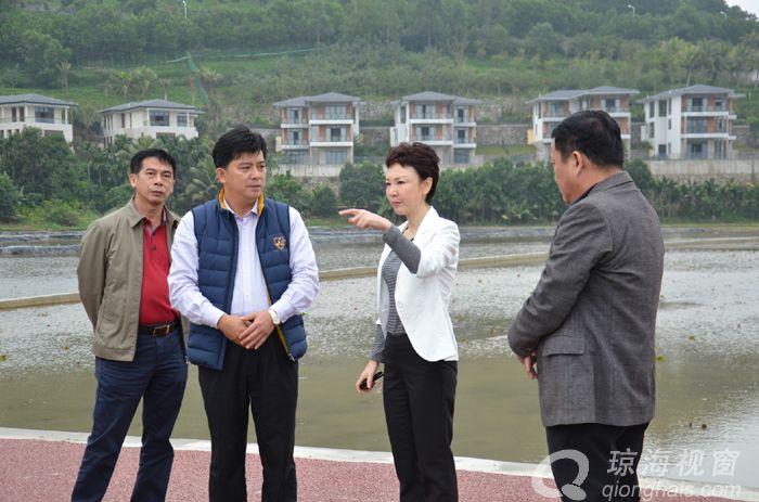 琼海宁虹雯:通过田洋整治促进农旅融合发展农民增收