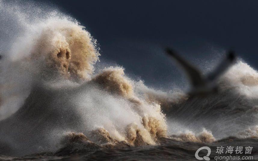 """极端天气引发伊利湖惊涛骇浪 变湖为""""海"""""""