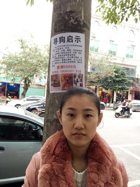 琼海一姑娘每天徒2万多步,酬5000元找条公狗,原因竟是。