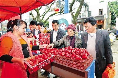 """琼海大路镇""""年货一条街""""开街 红红火火迎春节(图)"""