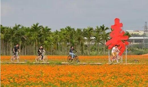 琼海全域旅游成热门  共接游客45.2万人次