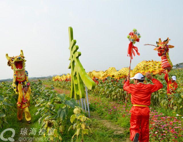 2月2龙抬头 琼海龙寿洋田园公园舞龙闹春
