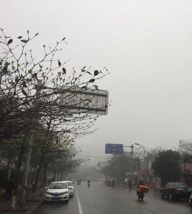 海口被大雾笼罩  琼海等4市县发布大雾预警