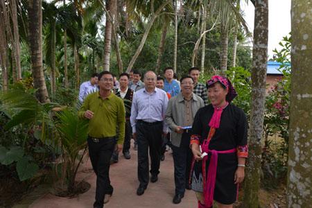 2016年全国民族经济工作会议代表考察加脑苗族特色村