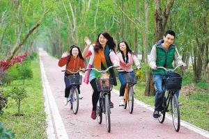 对乡道硬化绿化美化 琼海乡村道路引来投资通往富裕
