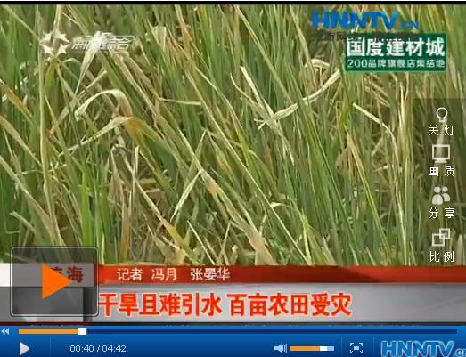 琼海:稻田干旱开裂难引水 百亩农田受灾恐无收