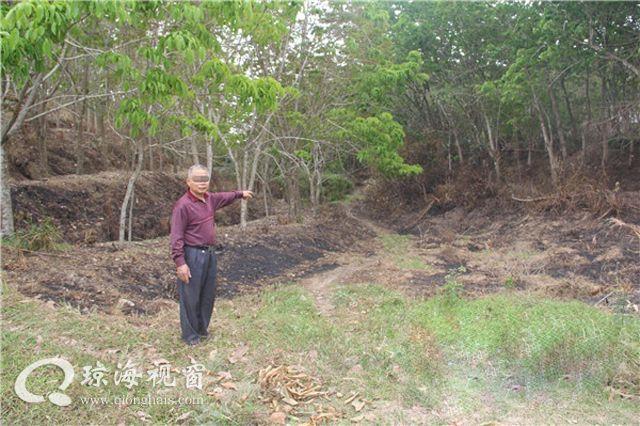 琼海森警破获一宗森林失火案 过火林地60.8亩