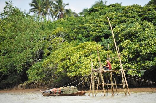 文昌琼海捕捞:千张渔网向大海