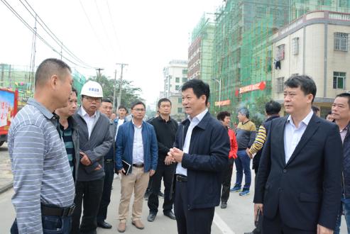 琼海市市长符平调研博鳌美丽乡村建设
