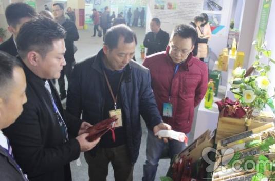 常山茶油文化节正式开幕,领导视察琼海品牌 