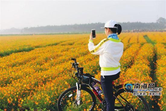游人在龙寿洋花海公园骑行赏花。蒙钟德摄