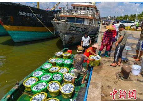 琼海传统渔港向休闲渔港转身