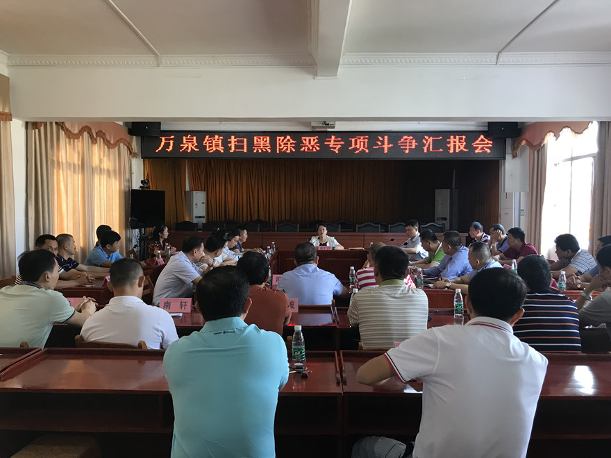 市检察院检察长佟莉莉到万泉镇主持召开扫黑除恶专项斗争工作会议