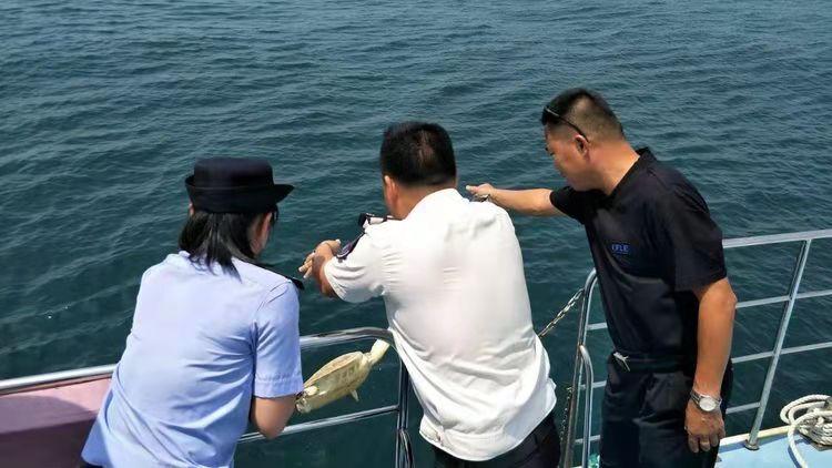 群众捡到海龟,琼海公安渔政联合放生